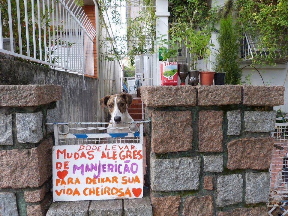 Gláucia Andare Colaboração : Karina Rath – Universalismo Crístico – Belo Horizonte – MG.
